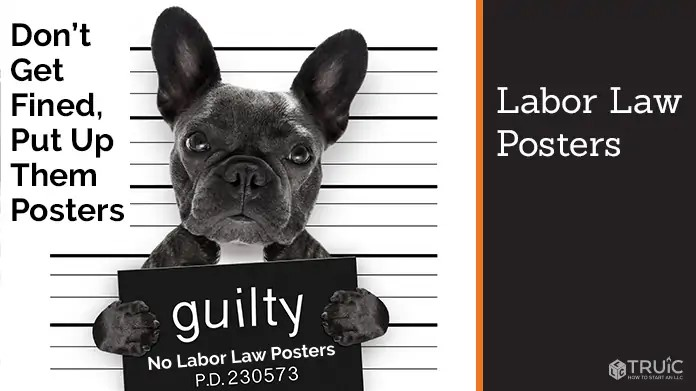 Where to Find the Latest Labor Law Posters for Your Business